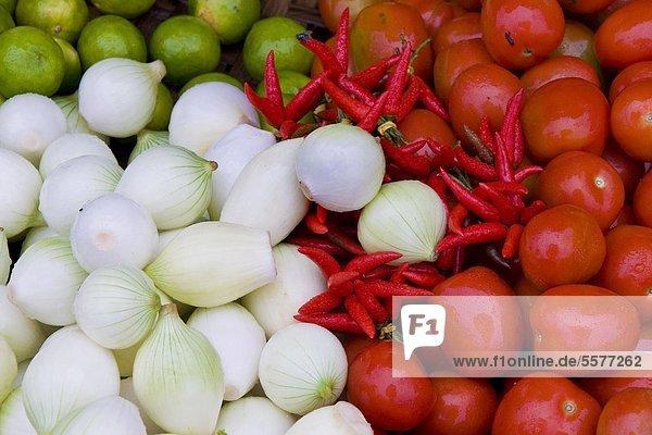 Zwiebeln  Tomaten und Peperoni