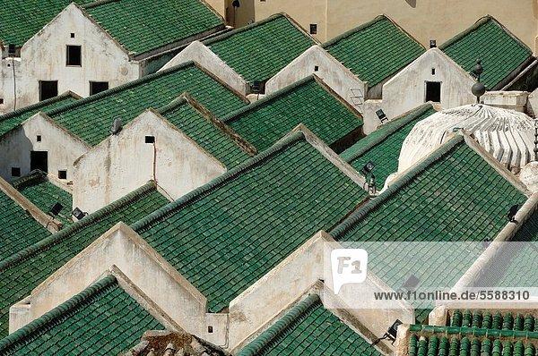 Fès  Fez  Dach  grün  Fes  Marokko  Moschee  Universität