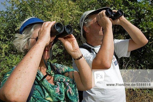 Strauch  Vogel  Fernglas  wandern  Süden  beobachten  Tier  Gambia