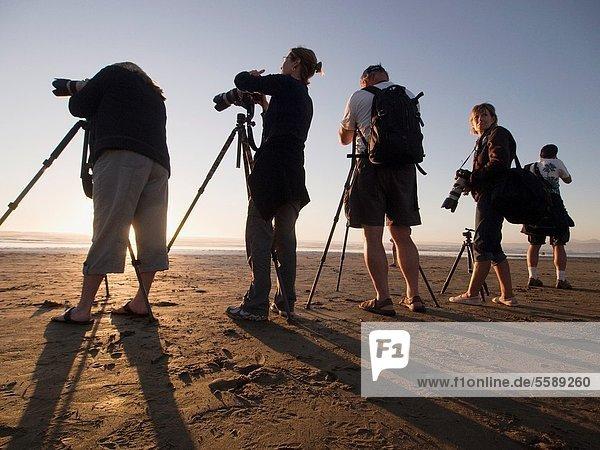 Vereinigte Staaten von Amerika  USA  Strand  Fotograf  Bucht  Kalifornien