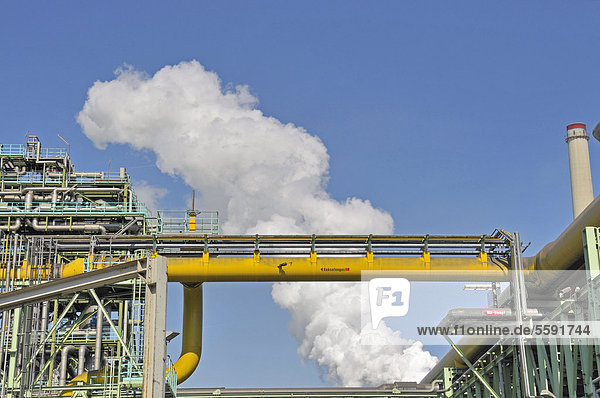 Chemische Anlagen der Kokerei Schwelgern  ThyssenKrupp Steel Werksgelände Hamborn  Schwelgern  Duisburg  Nordrhein-Westfalen  Deutschland  ÖffentlicherGrund