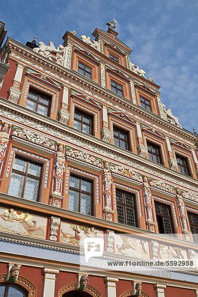 Haus zum Breiten Herd  historic Renaissance guild house  Fischmarkt square  Erfurt  Thuringia  Germany  Europe