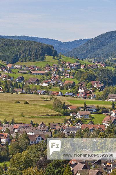 Blick auf Baiersbronn  Schwarzwald  Baden-Württemberg  Deutschland  Europa