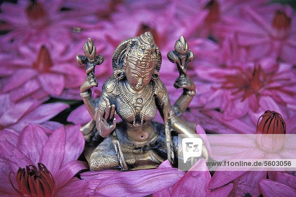 Göttin Lakshmi  hinduistische Göttin des Glücks und der Schönheit  Lotos-Blüten  Thrissur  Kerala  Südindien  Asien