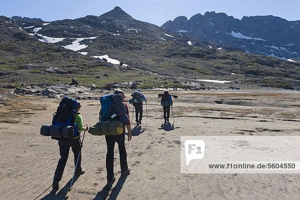 Group of hikers near Tasiilaq or Ammassalik  East Greenland  Greenland