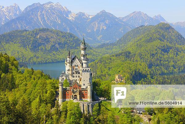 Schloss Neuschwanstein bei Füssen  Allgäu  Bayern  Deutschland  Europa