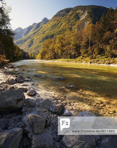 Herbst an der Soca  Slowenien  Europa