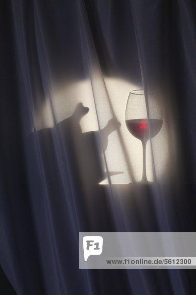 Silhouette eines Dinners mit Rotwein und Geflügel Silhouette eines Dinners mit Rotwein und Geflügel