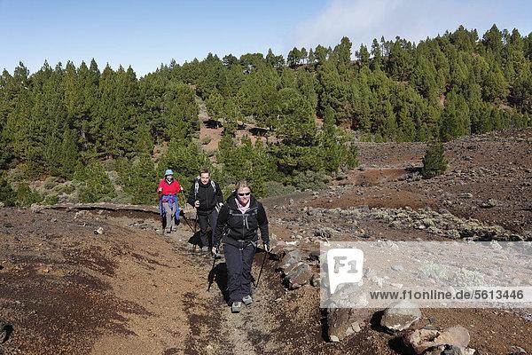 Wanderer auf der Vulkanroute  Ruta de los Volcanes  La Palma  Kanaren  Kanarische Inseln  Spanien  Europa