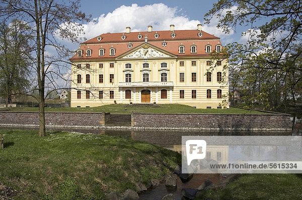 Schloss Wachau bei Radeberg im Frühling  Sachsen  Deutschland  Europa