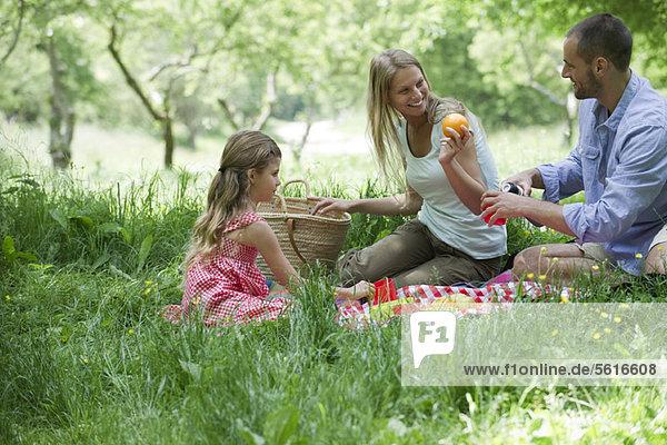 Familie beim Picknick im Freien
