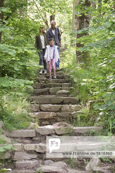 Familienwanderung über Steintreppen im Wald