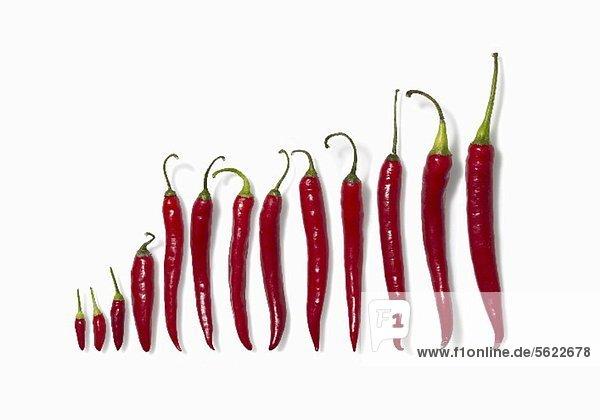 Frische rote Chilischoten (Diagramm)