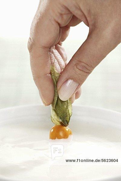 Hand dippt Physalis in Joghurt Hand dippt Physalis in Joghurt