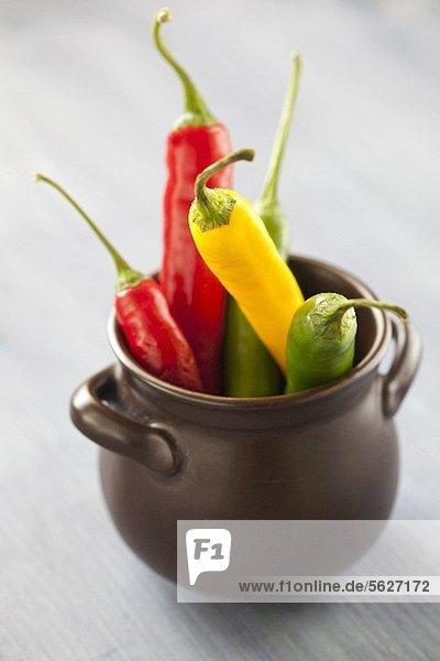 Rote  gelbe & grüne Chilischoten