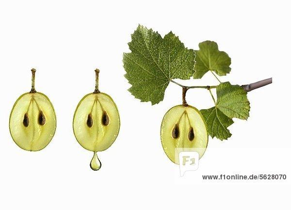 Symbolbild zu Traubenkernöl Symbolbild zu Traubenkernöl