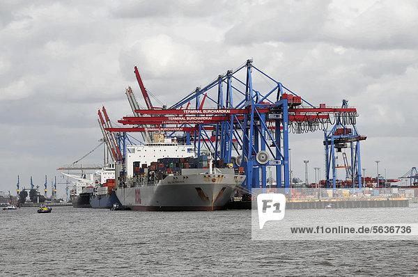 OOCL SAN FRANCISCO Containerschiff  Baujahr 2000  277m  im Containerhafen  Hansestadt Hamburg  Deutschland  Europa