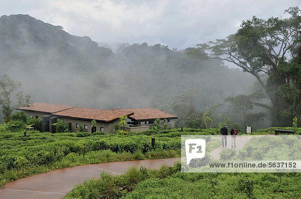 Wald Lodge Landhaus Chalet Afrika Ruanda