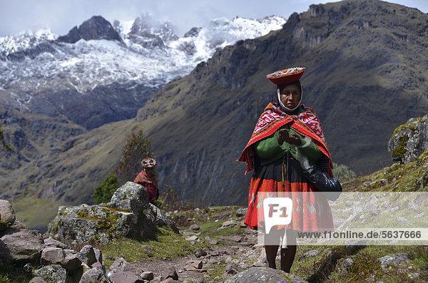 Traditionell gekleidete Indio-Frau in den Anden  bei Cusco  Peru  Südamerika