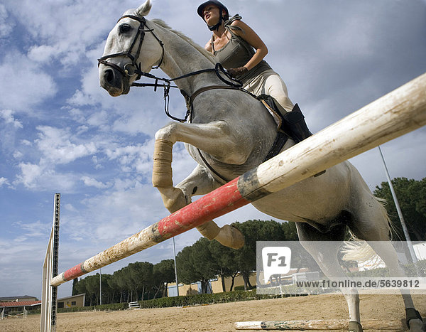Frau reitet Pferd über Hürde