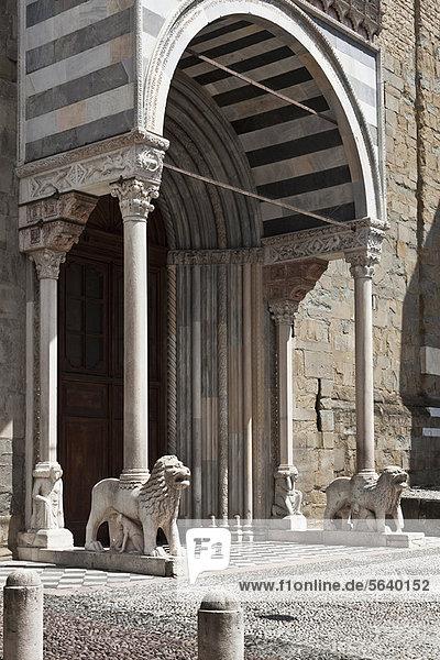 Löwe  Panthera leo  Eingang  Statue  Torbogen