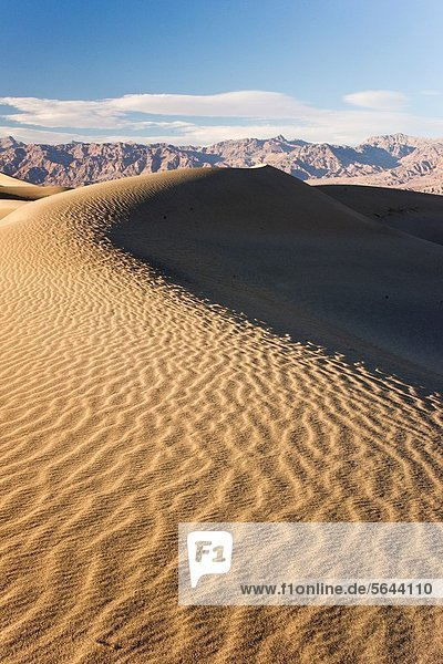 Sensuously sculpted sand dune in Death Valley National Park