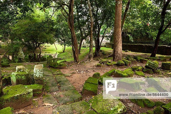 Preah KhanPrah Khan  Sacred Sword  is a temple at Angkor  Cambodia  built in the 12th century for King Jayavarman VII  It is located northeast of Angkor Thom  Angkor  UNESCO World Heritage Site  Cambodia  Indochina  Southeast Asia  Asia