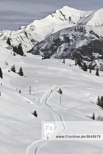 Schneepfad und Bergkette im Hintergrund