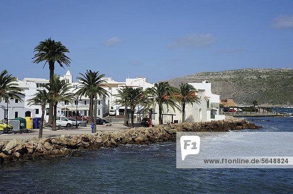 Europa Baum Gebäude weiß Menorca Balearen Balearische Inseln Bucht Mittelmeer Spanien