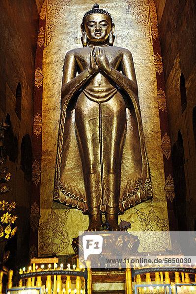 Großer stehender Buddha im Ananda Tempel von Bagan  Birma  Burma  Myanmar  Südostasien  Asien