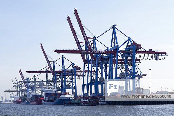 Verladekräne  Hafen  Hamburg  Deutschland  Europa
