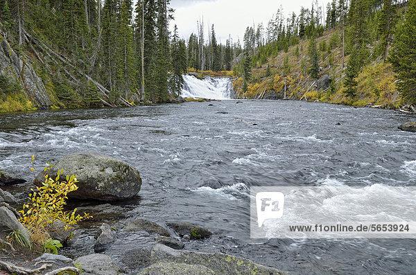 Lewis Falls  Yellowstone National Park  Wyoming  USA