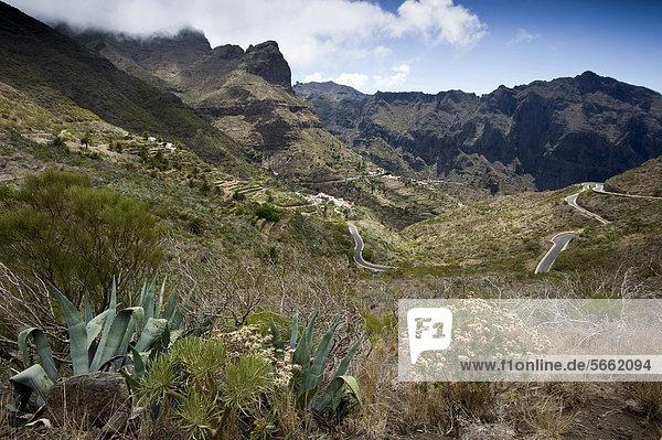 Masca und Bergstraße  Teno-Gebirge  Teneriffa  Kanarische Inseln  Spanien  Europa