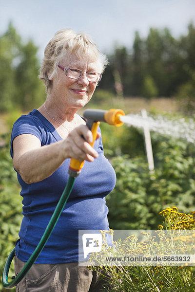 Glückliche ältere Frau  die Pflanzen im Garten gießt.