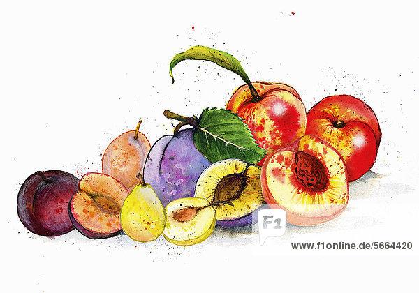 Stillleben mit verschiedenen Früchten