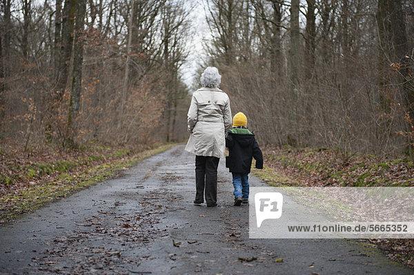 Großmutter und Enkel beim Waldspaziergang  Händchenhalten  Rückansicht