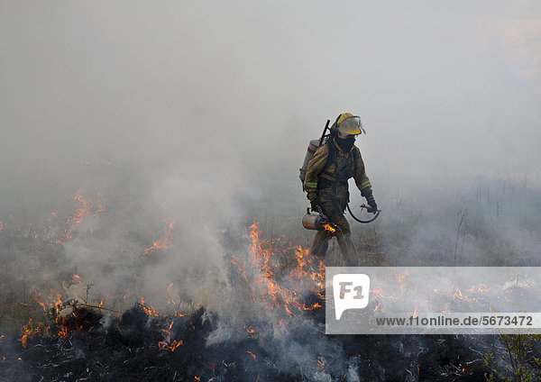 'Cayla Tinney  26  wears protective clothing as she helps burn parts of River Rouge Park with the aim of eliminating invasive species