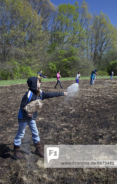 Fourth and fifth grade students from Priest Elementary School sow native plant seeds in a meadow in River Rouge Park that had been purposely burned before to eliminate invasive species and to facilitate restoration of a native prairie habitat  Detroit  Michigan  USA