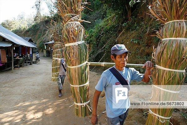 Mann  tragen  Dorf  3  sprechen  Ethnisches Erscheinungsbild  Lifestyle  Mitglied  Schilf  Thailand