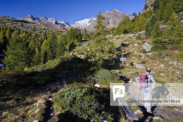 Wanderer beim Aufstieg zur hinteren Eggenspitz im Ultental oberhalb des Weißbrunnsees  Südtirol  Italien  Europa Wanderer beim Aufstieg zur hinteren Eggenspitz im Ultental oberhalb des Weißbrunnsees, Südtirol, Italien, Europa