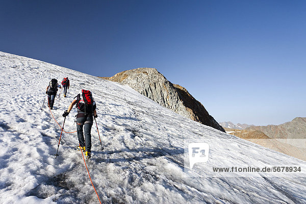 Hikers during the ascent to Similaun Mountain on Niederjochferner Glacier in Senales Valley  Alto Adige  Italy  Europe
