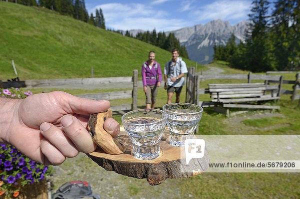 Wanderer-Paar wird an der Blinzalm mit einem Schnaps begrüßt  Hartkaiser  Blick auf Wilder Kaiser  Tirol  Österreich  Europa