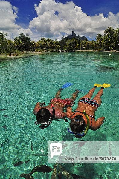 Schnorchler  Saint Regis Bora Bora Resort  Bora Bora  Inseln unter dem Wind  Gesellschaftsinseln  Französisch-Polynesien  Pazifischer Ozean