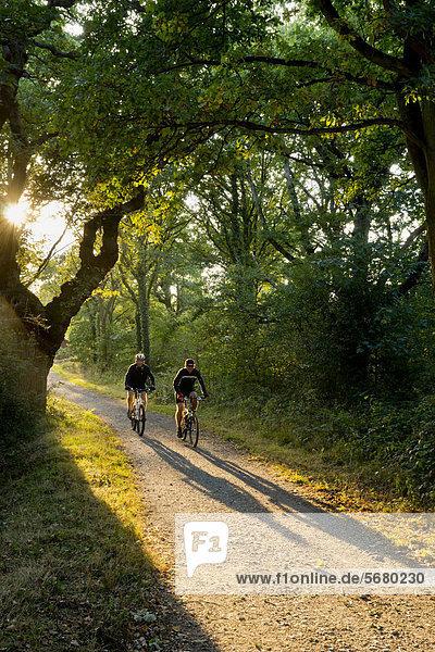 Zwei Mountainbikefahrer  Surrey  South East England  England  Großbritannien  Europa