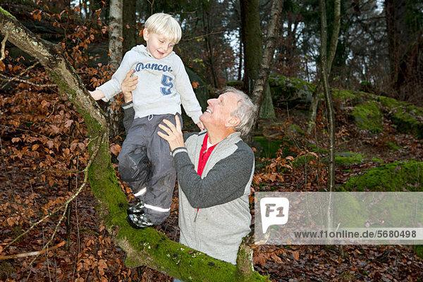 Großvater hält Junge auf Baumzweig