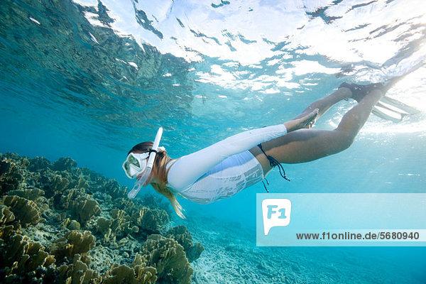 Schnorchler Blick auf das Korallenriff