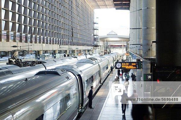 Atocha train station  Madrid  Spain