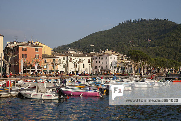 View over the port towards the town  Garda  Lake Garda  Veneto  Italy  Europe  PublicGround
