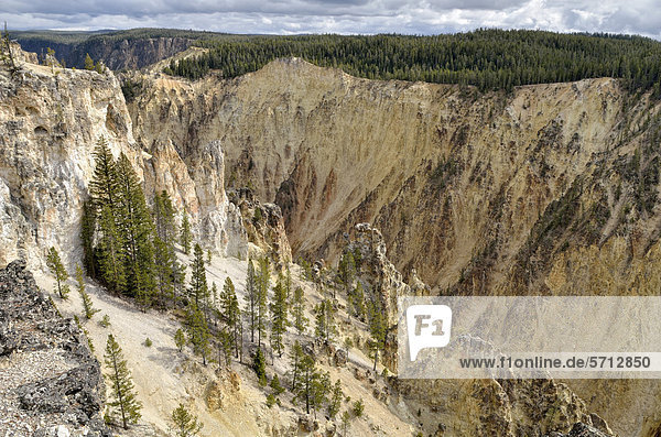 Grand Canyon of the Yellowstone River  Blick vom Lookout Point am North Rim in Richtung Artist Point  Yellowstone National Park  Wyoming  USA
