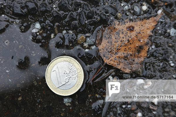 Euromünze in Pfütze  Symbolbild Das Geld liegt auf der Straße